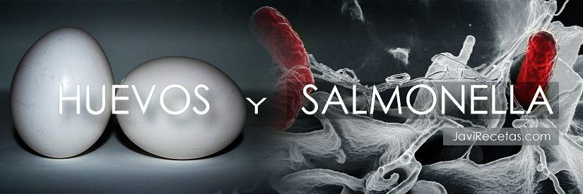 Salmonella y Huevos